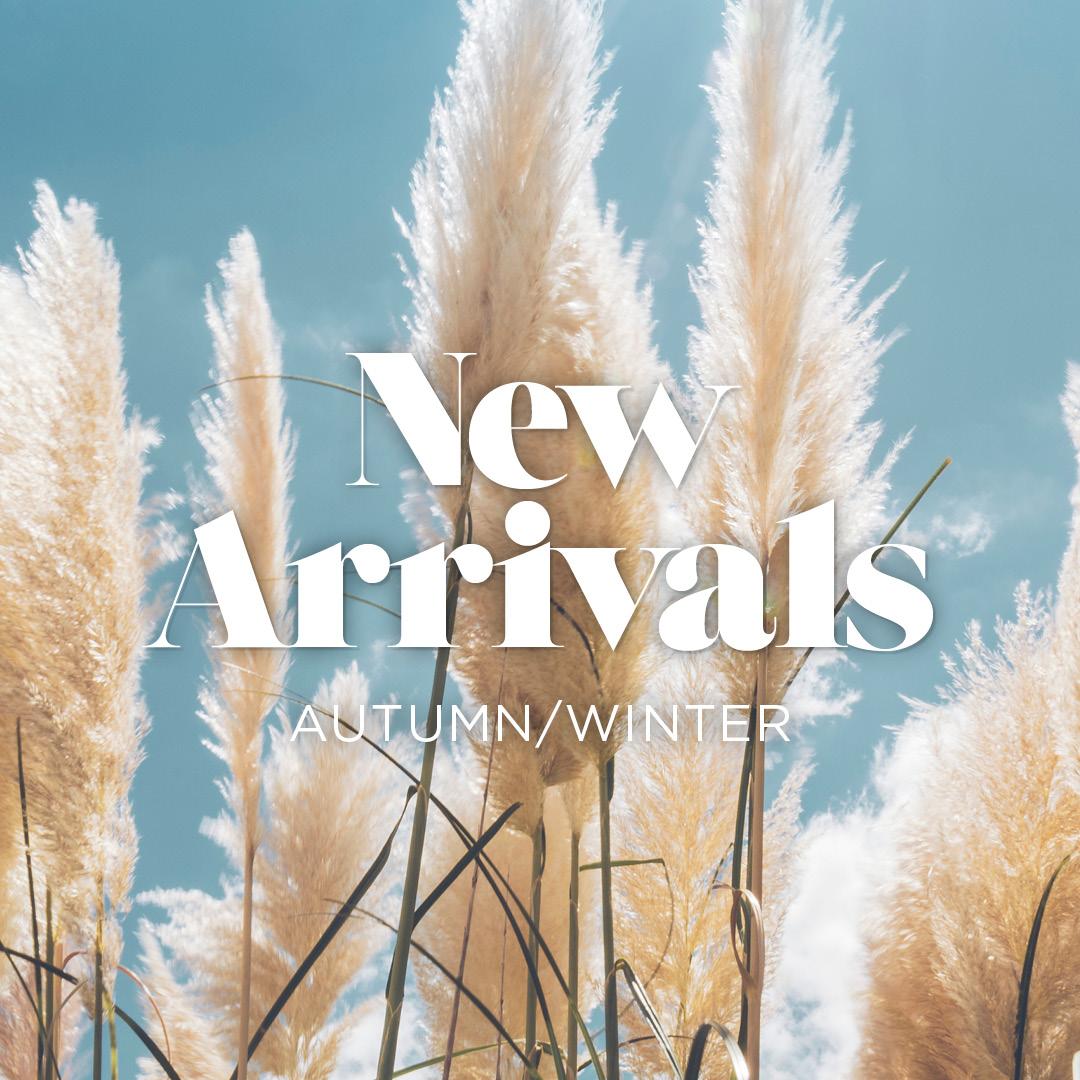 NEW ARRIVALS | AGU 25 - 22 SEPT